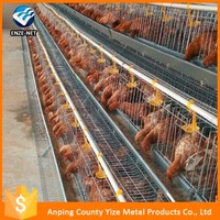 Direct Factory Chicken farm/chicken egg poultry farm equipment/used poultry processing equipment