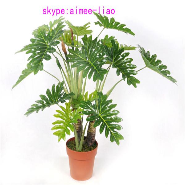 Q090401 ornamental indoor plants fake philodendron selloum bonsai ...