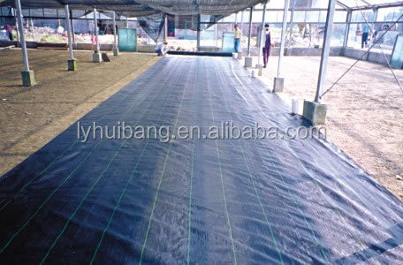 Biodegradable agricultural plastic mulch film