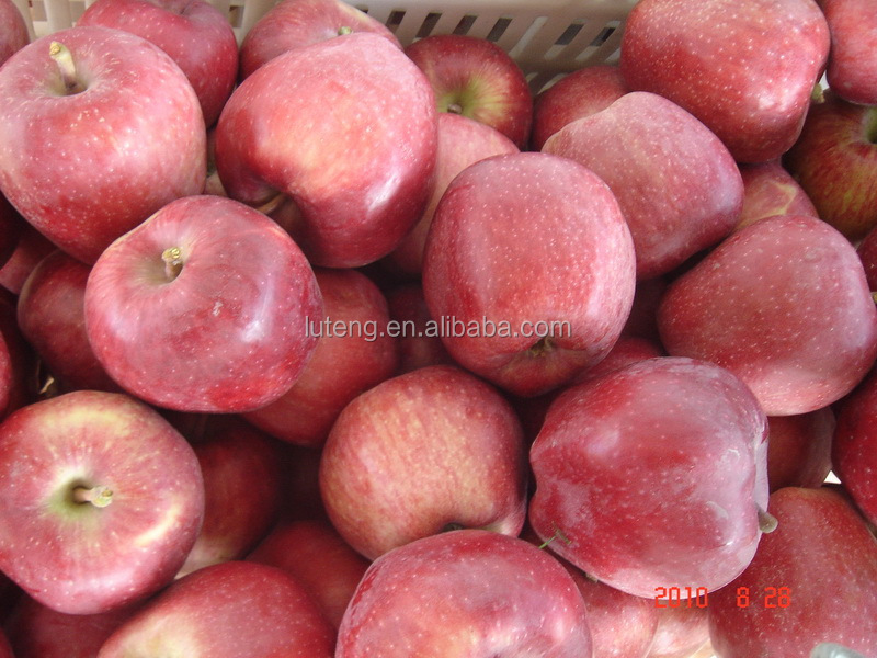 2015 new bulk wholesale huaniu apple fruit with cheaper price