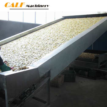 industrial dried fruit dryer equipment / fruit processing equipment