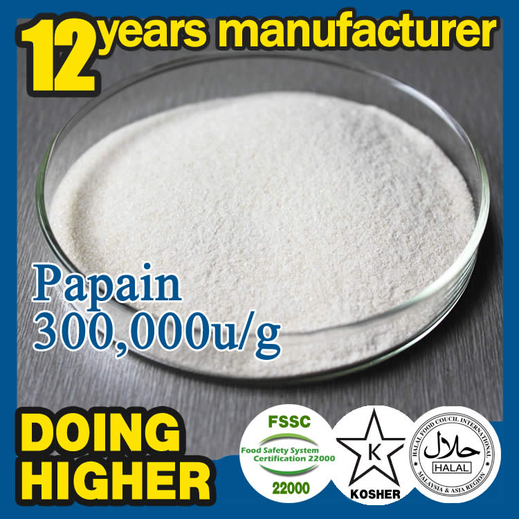 China best Manufacturer plant extract papain enzyme food additives price papain