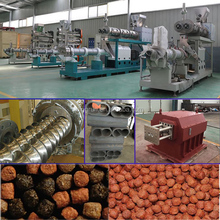floating Catfish Fish Feed Machine / processing line (SLG)