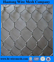 Chicken wire netting / hexagonal wire netting / poultry mesh