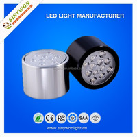 Ceiling Mount 12w Black/Silver Surface Down Led Light