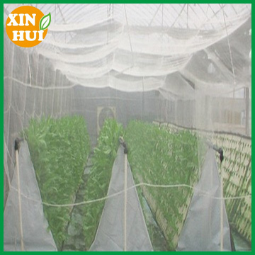 HDPE transparent agricultural vegetable protected anti insect net