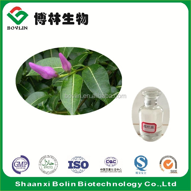 Shaanxi Bolin Supply Best Price Eucalyptus Oil Bulk for Medical Products