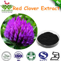 Natural Trifolium Pratense L.Extract /Red Clover Extract with Isoflavone