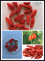 Dried goji berry 250