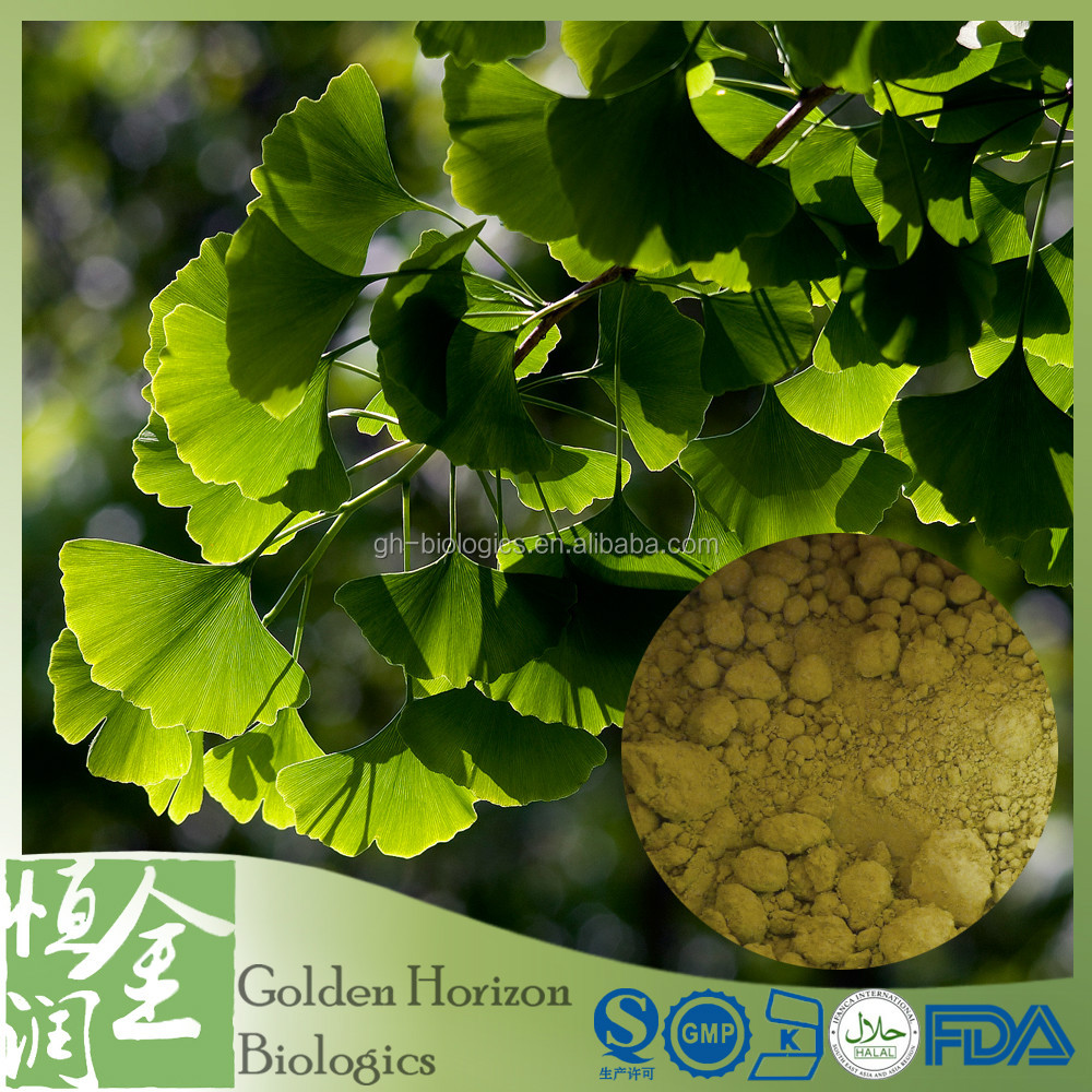 Factory Supply Ginkgo Flavone Glycosides Terpene Lactones
