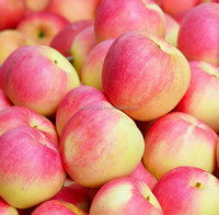Cheapest import china products fresh apple chinese apple fruit gala apple