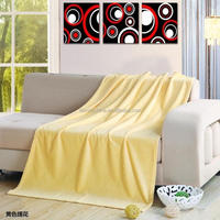 Hot selling picnic outdoor use cheap light fleece blanket