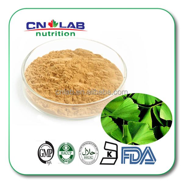 Ginkgo biloba P.E / Ginkgo Biloba Extract for Food Supplement for the Aged