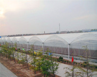 Greenhouse plastic clear film/greenhouse covering/agricultural plastic film