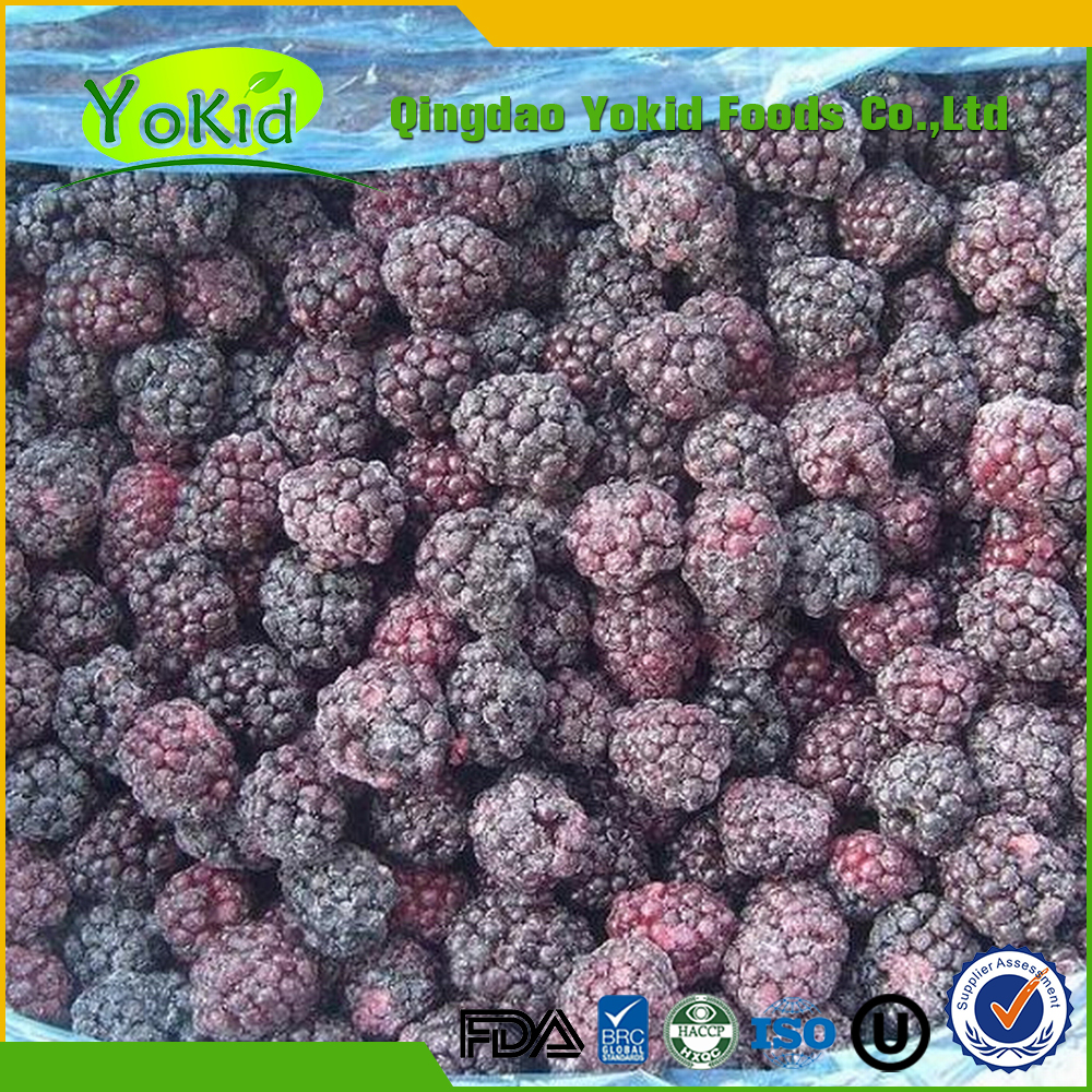 hot sale high quality IQF& frozen blackberry and bulk china blackberry price
