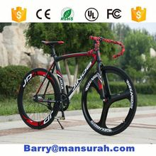 Road Racing Bike blue color for Iran, Europe , design in austria fahrrad