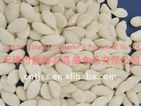 Roasted and salted pumpkin seeds from China