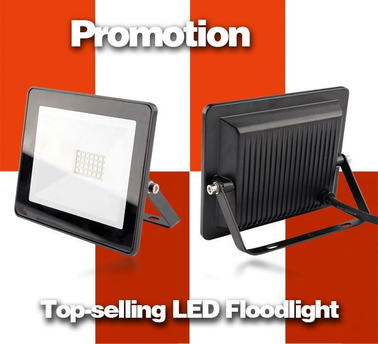 92610 Efficiency 50w led flood light bridgelux meanwell driver ip65
