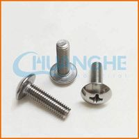 China Manufacturer 2015 new products stainless steel screw size m6