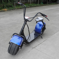 Halley Electric Scooter with Lithium Battery 60V 12AH