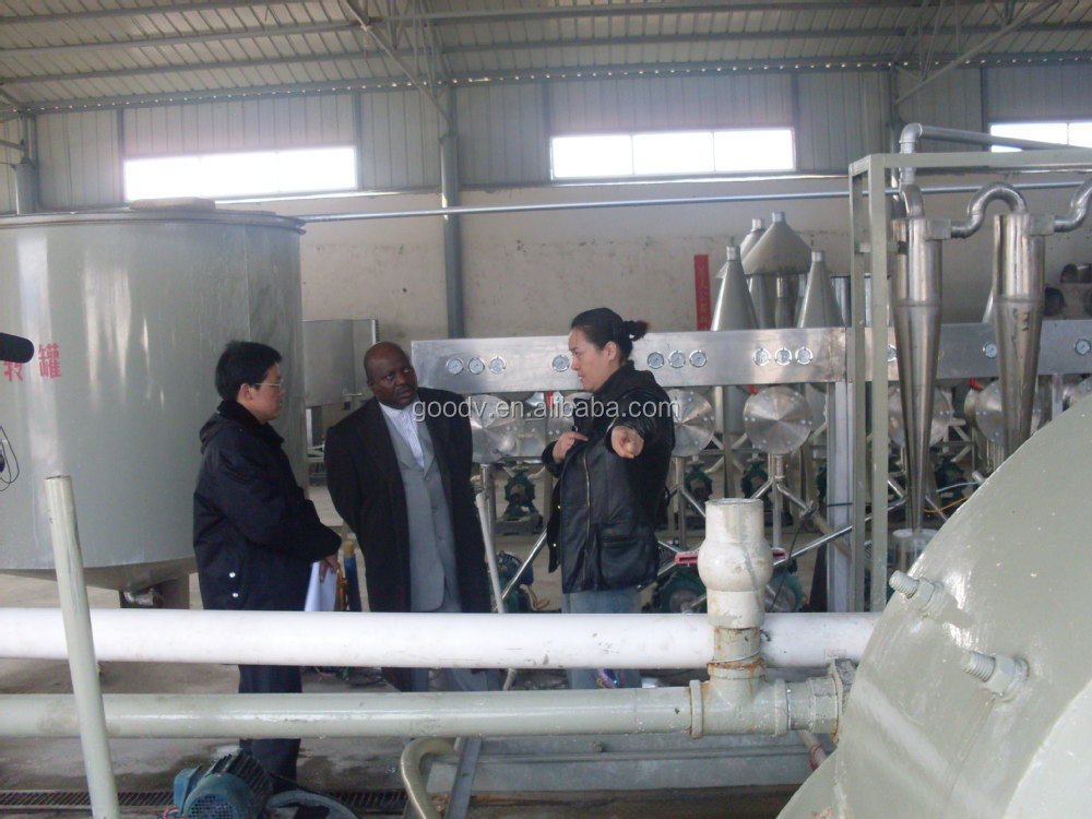 Automatic stainless steel cassava washing and peeling machine