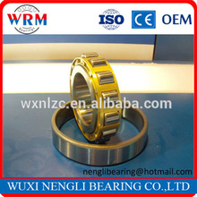 OEM Brand Name Cylindrical Roller bearings N319 for Motorcycle Trailer