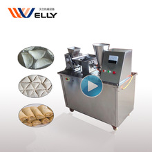 Factory price Chinese automatic dumpling machine/samosa making machine/spring roll machine
