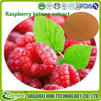 Herbal Extract Natural Raspberry Ketone Slim Patch
