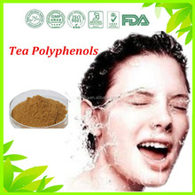 Factory supply antioxidant Cas#989-51-5 Tea Polyphenols with highest quality in stock