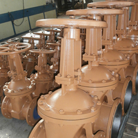 Flanged Hand Wheel-operated ANSI Standard Cast Steel Gate Valve