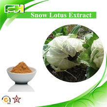 Cosmetics Snow lotus extract. Snow lotus Extract Powder