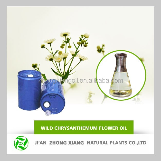 Natural Powder Chrysanthemum Oil,Pure Chrysanthemum Oil