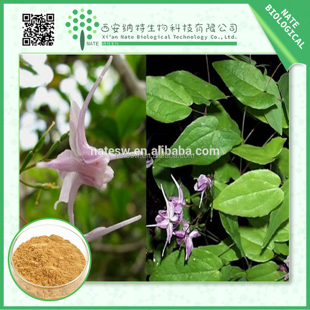 Wholesale Products herbal extract epimedium extract 98%