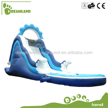 Dreamland water and dry slide jumpers Inflatable Pool & Double Water Slide