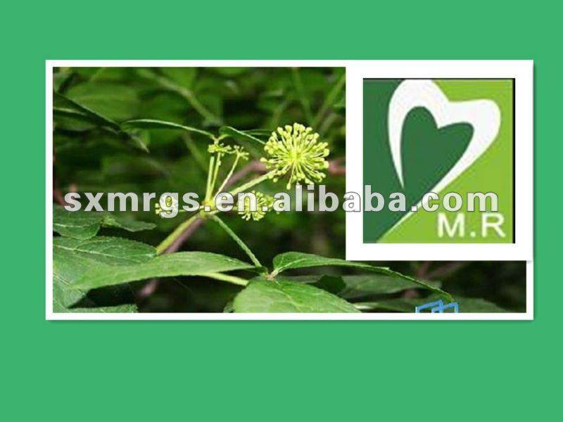 Siberian Ginseng Extract benefit spleen,norish kidney,relieve uneasiness of mind