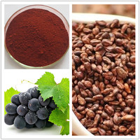 World-way Biotech Grape seed extract with 95% procyanidine ,strong anti-oxidant function