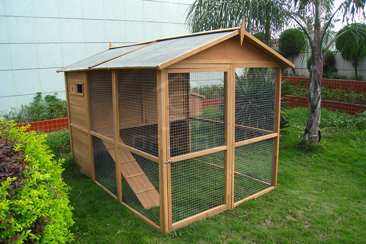 DXH005 natural color custom made wooden pigeon cage