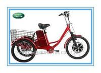 350W 36V electric tricycle for adults with tail basket