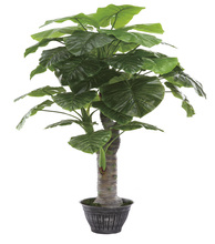 new design garden products exotic and tropical bonsai artificial plant and flowers----0290