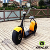 Citycoco/seev/woqu adult electric motorcycle for sale