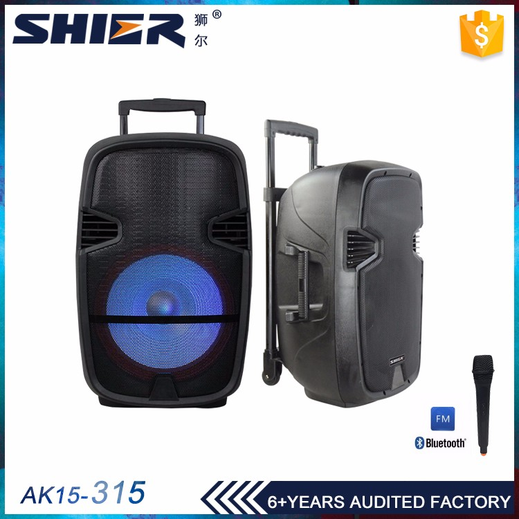 Professional supplier wholesale powered professional speaker battery