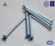 High Quality Zinc Plated Flat Head Nail, Common Nail, Common Wire Nail