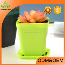 high quality colorful mini plastic flower pots wholesale