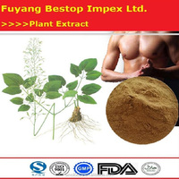 Yin Yang Huo High Quality Epimedium