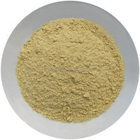 2015 New Spice Dehydrated Ginger Powder
