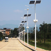2015 customized China supplier 60W solar street light with poles