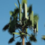 30-meter pine branch camouflage communication tower
