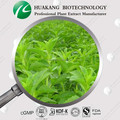 China Exporter Stevia Leaf Extract HALAL Kosher