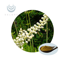 High Quality of Black cohosh extract 2.5% Triterpenoid saponins / Black Snakeroot Extract
