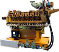 Honny Dual Fuel Diesel Gas Engine CHP